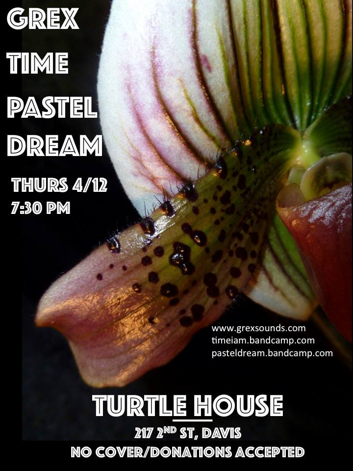 4/12 — Davis, CA @ Turtle House